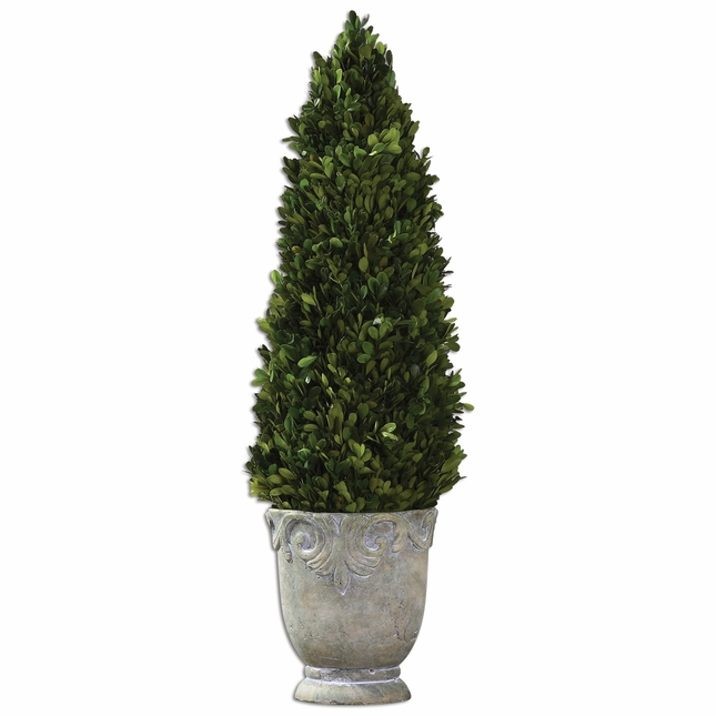 Boxwood Evergreen Cone Topiary 60111