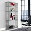 Gridiron Modernistic Stainless Steel Bookshelf With Glass Shelves, Silver
