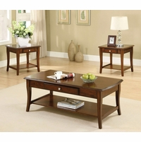 Lincoln Park Transitional Dark Oak Accent Tables Set with Drawers and Open Shelf