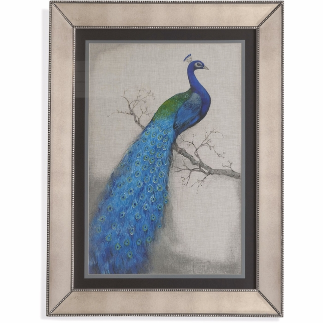 Peacock Blue Traditional Framed Art 9900-177AEC