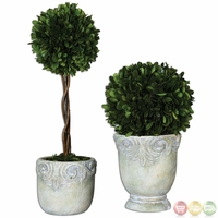 Preserved Boxwood Set of 2 Ball Topiaries 60112