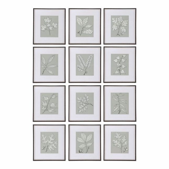 "Set Of 12, Leaves On Taupe Wall Art With Black Shadowbox Style Frame , 18""x20"""