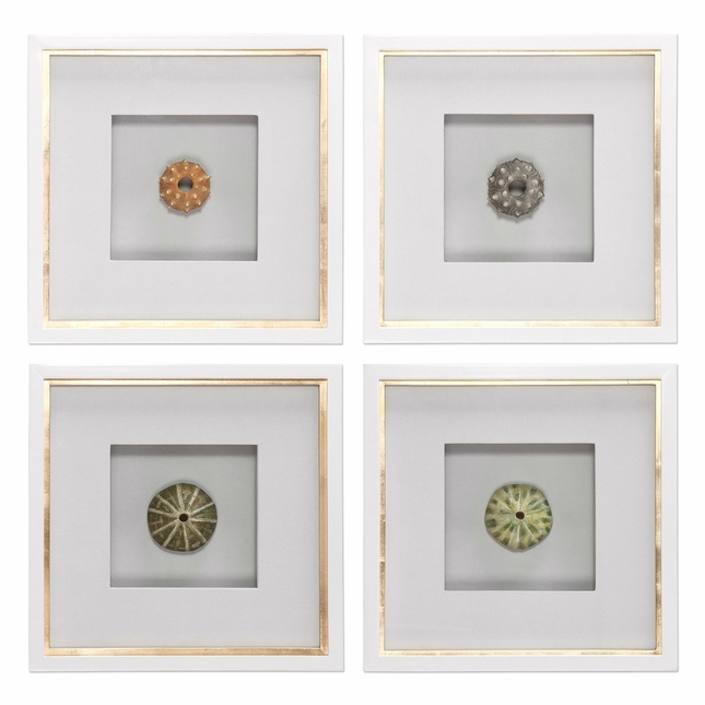 "Set Of 4, Nautical Theme Sea Urchins Shadow Box Art On White Frames, 17""x17"""