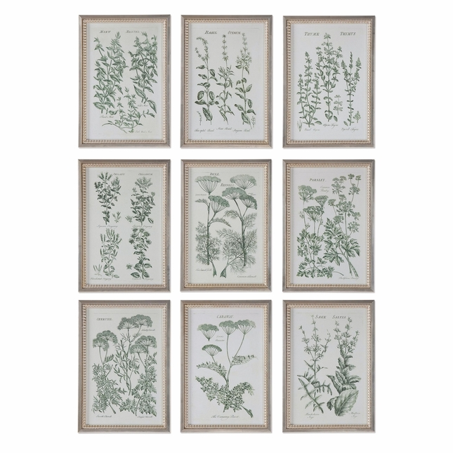 """Set Of 9, Herb Garden Prints Under Glass Frame With Beaded Frame Edge, 14""""x20"""""""
