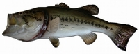 "22"" Large Mouth Bass Half Mount Fish Replica"