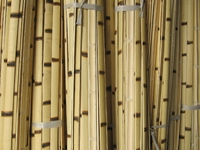 "25 Burnt Bamboo Flat Slats 1.75""x6ft"