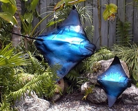 "40"" Blue Ray Half Mount Fish Replica"