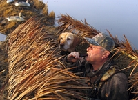 Duck Hunting Boat Grass Blinds