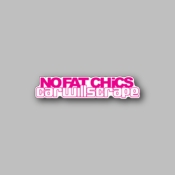 No fat chicks car will scrap - Racing Sticker - Vinyl Sticker
