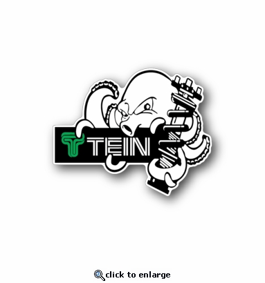 Tein - Racing Sticker - Vinyl Sticker