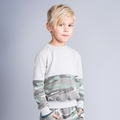 Joah Love Flynn Sweatshirt in Ash