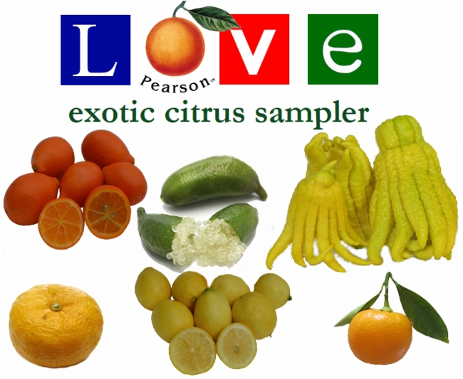 Exotic Citrus Sampler
