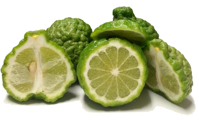 5 pounds Kaffir-Limes