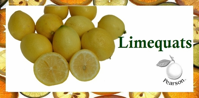 5 pounds Limequats