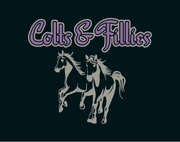 COLTS & FILLIES
