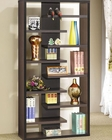 Contemporary Asymmetrical Bookcase CO800265