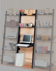 Desk with Bookcase CO800183