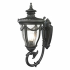 ELK Anise Collection 1 Light Outdoor Sconce in Textured Matte Black EK-45076-1