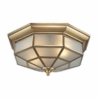 ELK Linoka 2 Light Flushmount in Brushed Brass EK-22016-2