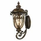 ELK Logansport Collection 1 Light Outdoor Sconce in Hazelnut Bronze EK-45072-1