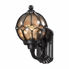 ELK Madagascar 1 Light Outdoor Sconce in Matte Black EK-87020-1