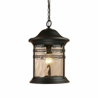 ELK Madison 1-Light Outdoor Pendant in Matte Black EK-08160-MBG