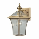 ELK Riverdale 1 Light Outdoor Sconce in Brushed Brass EK-22030-1