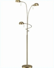 Lite Source 2 Lite Floor Lamp Denzel LS-82100AB