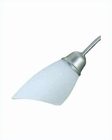 Lite Source 5 Lite Ceiling Lamp SS Frost Glass Shade LS-1046SS-FRO