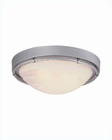 Lite Source Ceiling Lamp Flush Mount SS with Cloud Glass LS-5331SS-CLD