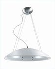 Lite Source Ceiling Lamp w/ Frost Glass Shade LSI-1858FRO