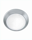 Lite Source Flush Mount Ceiling Lite SS with Frost Glass LS-5312SS
