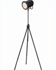 Lite Source Metal Floor Lamp in Dark Bronze Directeur LS-81724D/BRZ