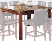 Square Counter Height Table Bologna by Acme Furniture AC07380