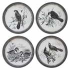 Uttermost Birds In Nature Framed Art, S/4