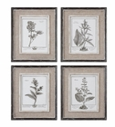 Uttermost Casual Grey Study Framed Art Set/4