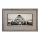 Uttermost Deep Sleep Bear Print