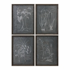 Uttermost Root Study Print Art S/4