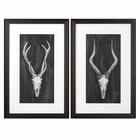 Uttermost Rustic European Mounts Prints S/2