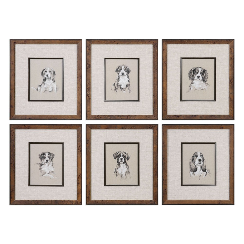 Uttermost Small Breed Sketch Prints S 6