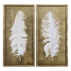 Uttermost White Feathers Gold Shadow Box Set of 2