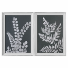 Uttermost White Ferns Prints S/2