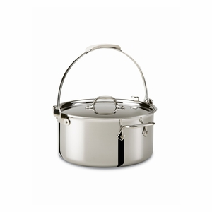 All-Clad Stainless Steel 8 Qt. Pouring Stockpot w/Lid - 4508P