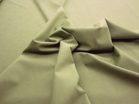 1 5/8 yards of Genuine Ambiance HP Ultrasuede Color 4484 fern