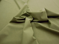 2 1/2 yards of Genuine Ambiance HP Ultrasuede Color 4504 Willow