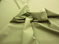 2 5/8 yards of Genuine Ambiance HP Ultrasuede color 4484 fern