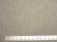 5 yards Perennials Stree-yay! - Platinum indoor-outdoor upholstery fabric