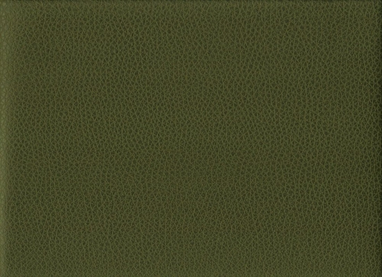 r8067, 12 yd Canyon fern vinyl