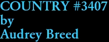 COUNTRY #3407 by Audrey Breed