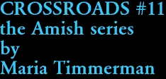 CROSSROADS #11 the Amish series by Maria Timmerman
